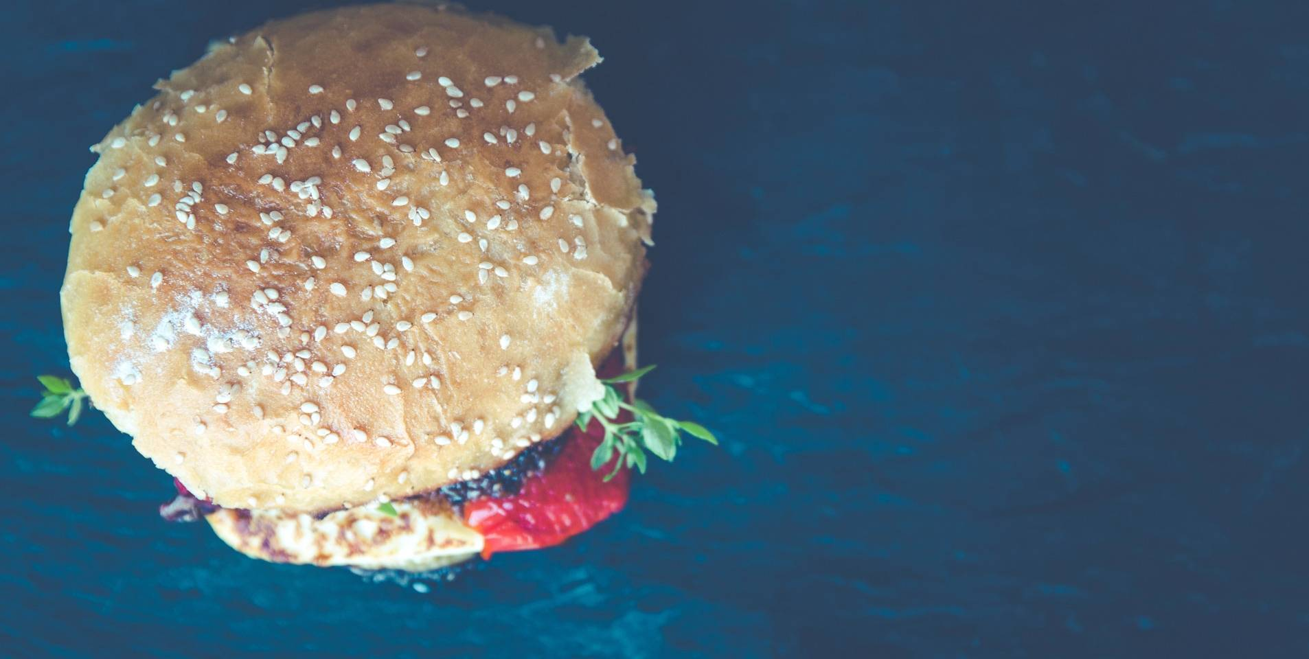 short paragraph about fast food