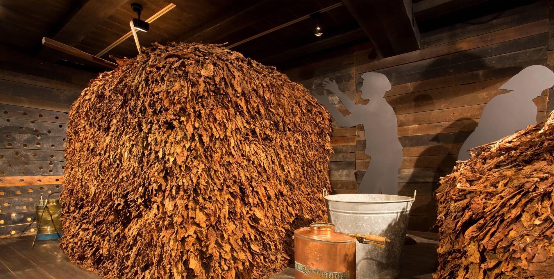 musée du tabac d'andorre